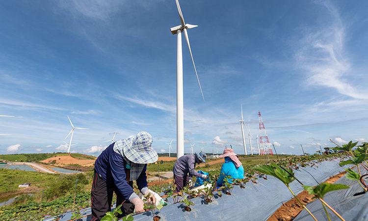 La Chine le plus gros acheteur énergétique
