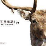 En Chine, les marques cosmétiques européennes face à la PETA