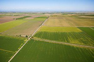 Quand la Chine achètent des terres cultivables en France